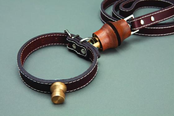 Seager Chosen7ben seagerlead on dog leash
